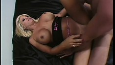 Hot, busty blonde Jill Kelly chews on his meat and then gets drilled